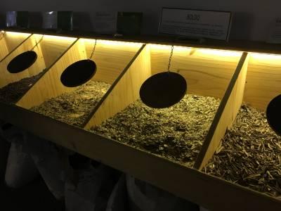 Echantillon de plantes composant la Chartreuse