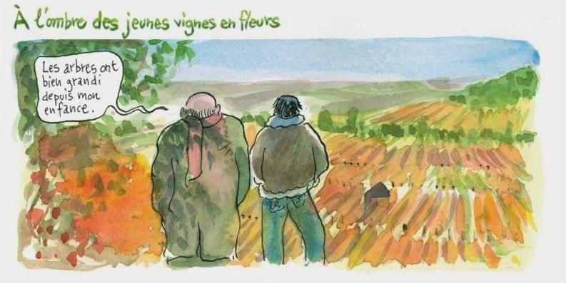 BD vin : conversation avec mon grand-père