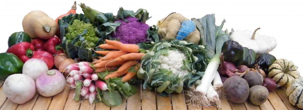 Panier de légumes bio
